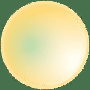 Web Design Kitchener | Affordable Custom Website Design Kitchener | Web Design Company in Kitchener | Website Design Kitchener | Kitchener Website Designers | Web Developer in Kitchener | circle yellow | Website Design | Website Development | SEO | Web Design Company | Web Design Agency | Web Designers | Web Developers